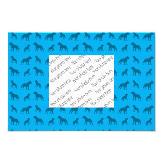 Sky blue bulldog pattern photo print