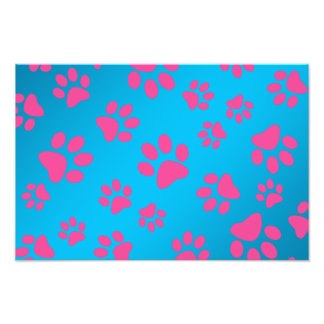 Sky blue pink dog paws photo print