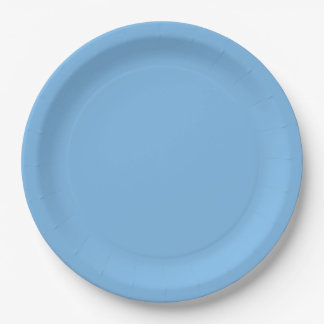 Sky Blue Template 9 Inch Paper Plate