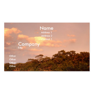 Sky Business Card