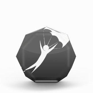 Sky Diver Icon Acrylic Award