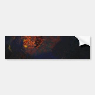 Sky Fire Bumper Sticker