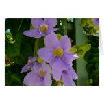 Sky Flower Vine Card