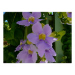 Sky Flower Vine Tropical Purple Floral Poster