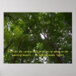 Sky Full of Trees Poster