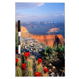 Sky Grand Canyon Spectical Dry-Erase Whiteboard