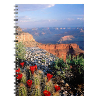 Sky Grand Canyon Spectical Notebooks