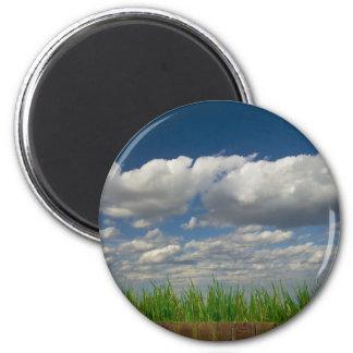 sky, grass, bricks magnet