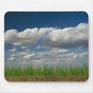 sky, grass, bricks mouse pad