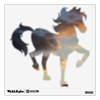 Sky Horse 3 - Storm Passes Over Wall Decal