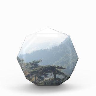 sky land grass tree mountain acrylic award