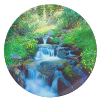 Sky Meadows in the Sierra Nevada Mountains Dinner Plate