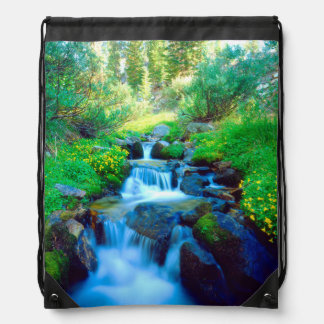 Sky Meadows in the Sierra Nevada Mountains Drawstring Bag