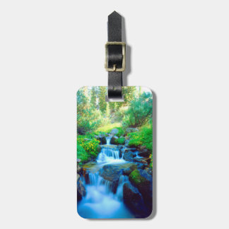 Sky Meadows in the Sierra Nevada Mountains Luggage Tag