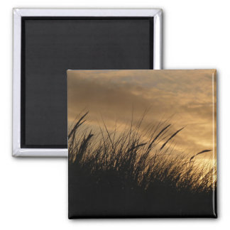 sky of gold 2 inch square magnet