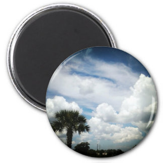 sky/palmtree magnet