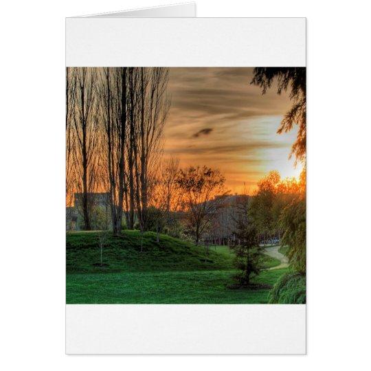 Sky Parkland Night Card