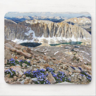 Sky Pilot Flowers, Mt. Whitney, California Mouse Pad