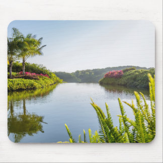 Sky Reflected In Still Tropical Lake Mouse Pad