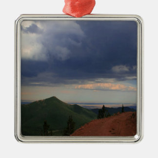 Sky Road To Nowhere Ornaments