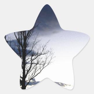 Sky Shepards Delight Star Sticker