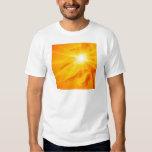 Sky Sunny Palm Hawaii Tees