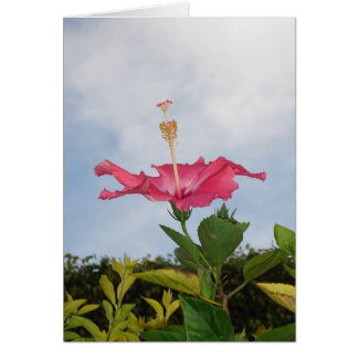 Sky Trumpet Stationery Note Card