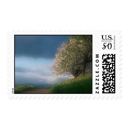 sky view stamp