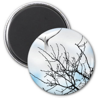 SKY WHALE 2 INCH ROUND MAGNET
