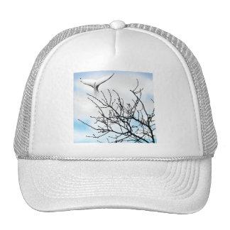 SKY WHALE TRUCKER HAT
