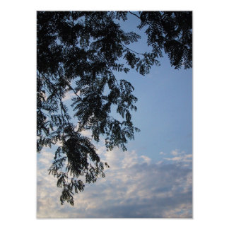 Sky with Leaves Poster