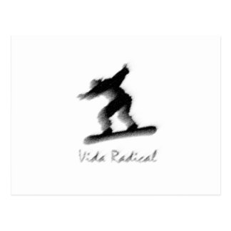 Skyboard Radical Life Vida Radical Postcard