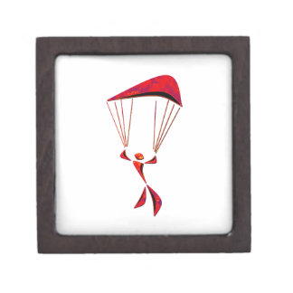 SKYDIVING SOUL SOUNDER JEWELRY BOX