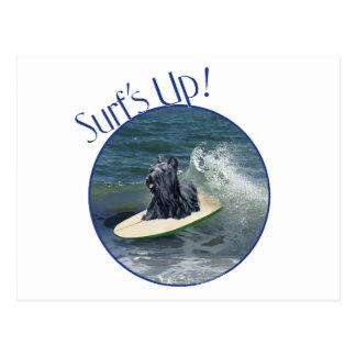 Skye que practica surf Terrier Postales