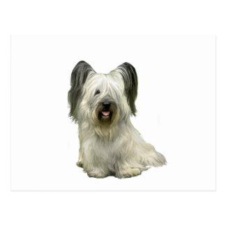 Skye Terrier (A) - Light Postcard
