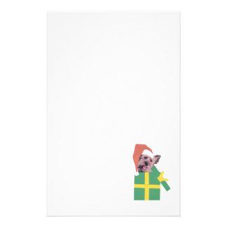 Skye Terrier Green Gift Box Stationery