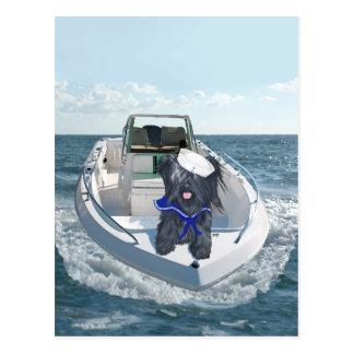 Skye Terrier hacia fuera en el barco Tarjetas Postales