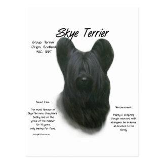 Skye Terrier History Design Postcard
