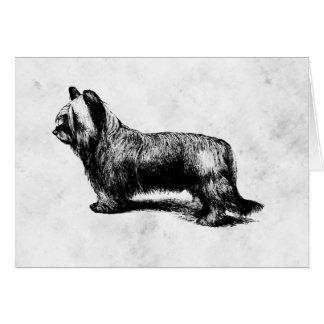 Skye Terrier vintage art Greeting Card