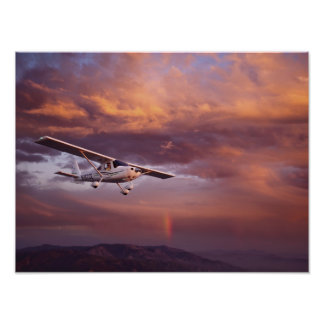 Skyfire Skycatcher Poster