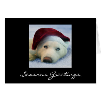 Skyla - Seasons Greetings Card