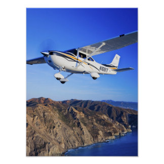 Skylane Catalina Print
