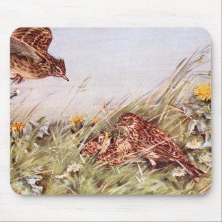 Skylarks In Field Scene Mouse Pad