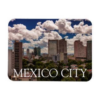 Skyline From The Hotels In Polanco Mexico City Rectangular Photo Magnet