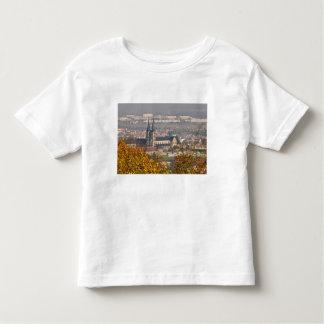 Skyline of Bamberg, Germany Toddler T-shirt