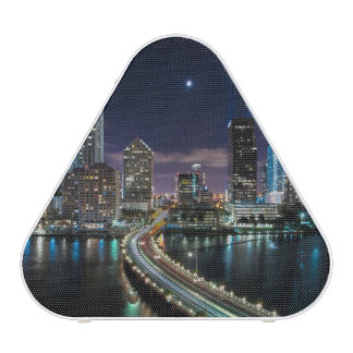 Skyline of Miami city with bridge at night Bluetooth Speaker