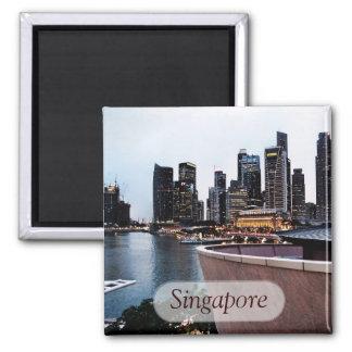 Skyscraper Views : Singapore Magnet