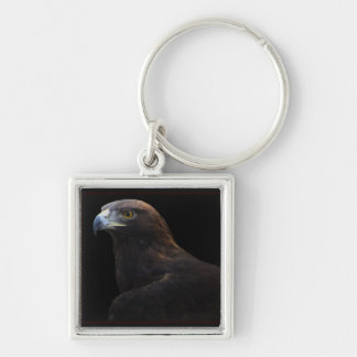 Skywalker Golden Eagle key chain