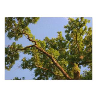 Skyward Tree Card