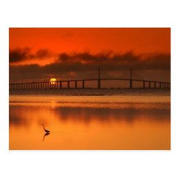 Skyway Bridge Postcard